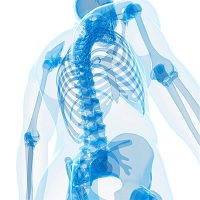 UCB: growing sales and growing bones