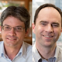 How to drive commercial excellence through analytics: lessons from two leading pharmacos