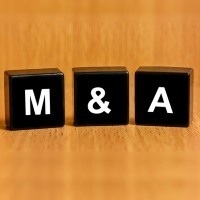 Pfizer casting elsewhere for overseas M&A?