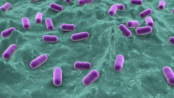 PureTech's Vedanta Biosciences gets federal funding for C. Diff. microbiome therapy