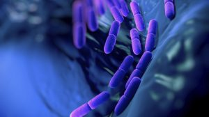 Medtech is key in fight against AMR