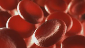 Roche's haemophilia drug hits phase 3 targets