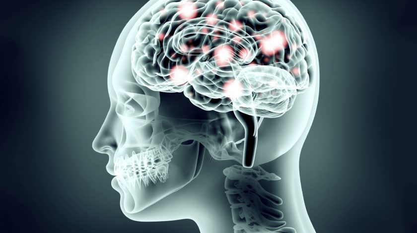 Midbrain activation course for adults