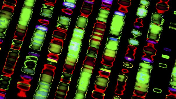 Sophia Genetics unveils latest 'genome browser' software