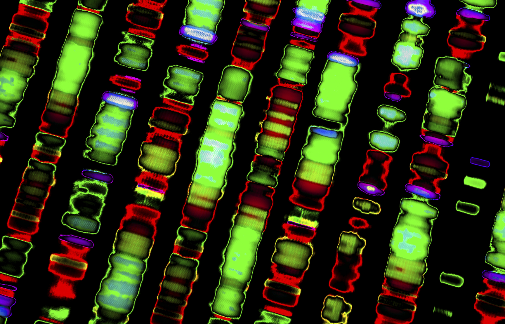 Sophia Genetics unveils latest 'genome browser' software - Pharmaphorum