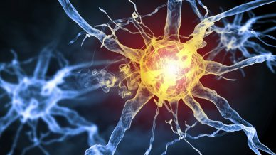 Neurocrine and Xenon agree $1.75bn epilepsy R&D tie-up