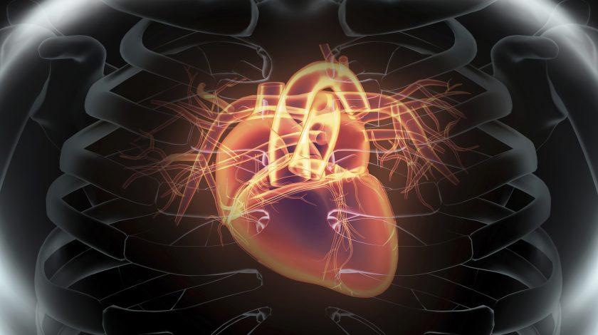 Merck axes cholesterol drug despite phase 3 success