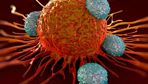 The next step in the fight against cancer: Making CAR-T a viable option