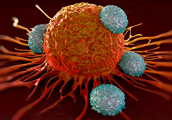 Servier and Pfizer begin trials for off-the-shelf T-cell cancer therapy