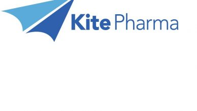 Kite lifted by CAR-T success in lymphoma