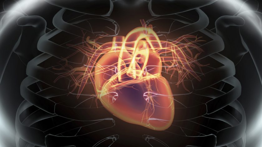 Verily developing AI-based heart disease test