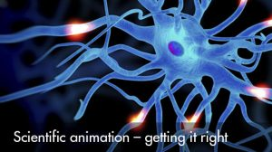 Scientific animation – getting it right