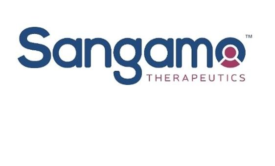 Sangamo and new gene therapy partner Pfizer lifted by FDA fast track