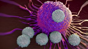Hope for CAR-T combination that could tackle solid tumours