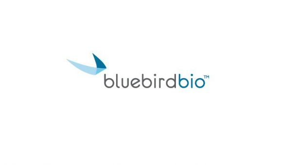 Spectacular results for bluebird's gene therapy in thalassemia