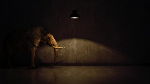 Health literacy 'elephant in the room' in patient engagement