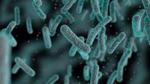 Pharma companies create $1bn fund to save antibiotic research
