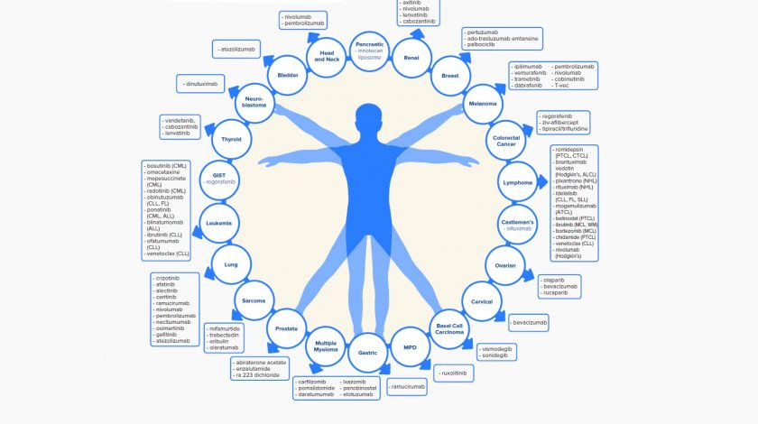 Oncology – the current landscape and what it means for the future