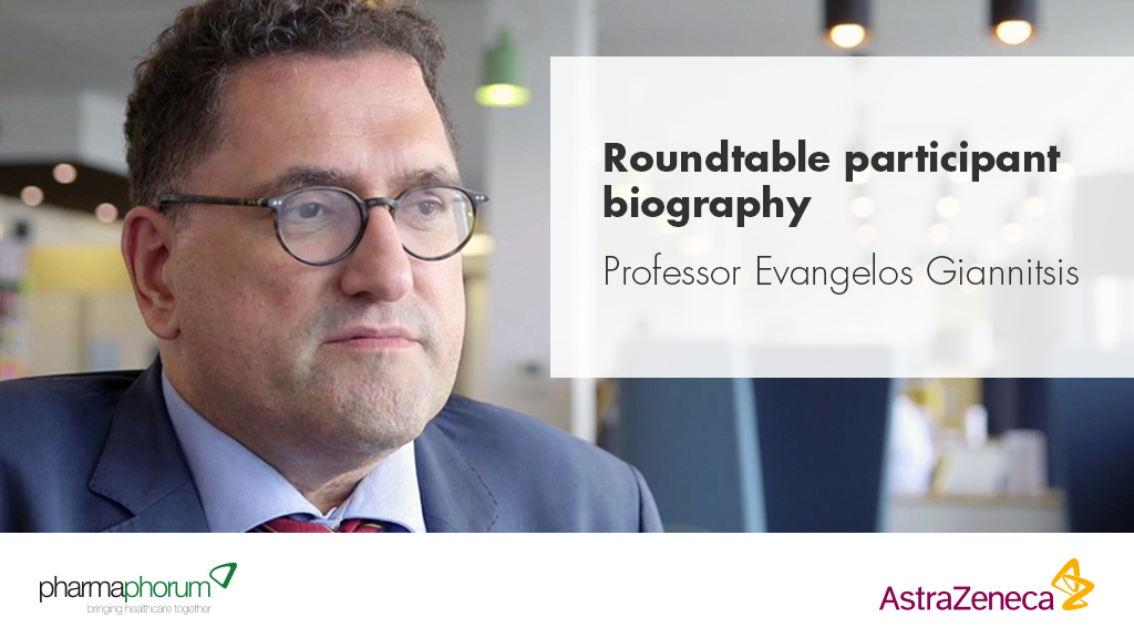 Roundtable participant biography – Professor Evangelos Giannitsis