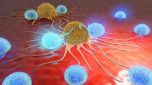 When science and biology combine – the outlook for ADCs in cancer drug development