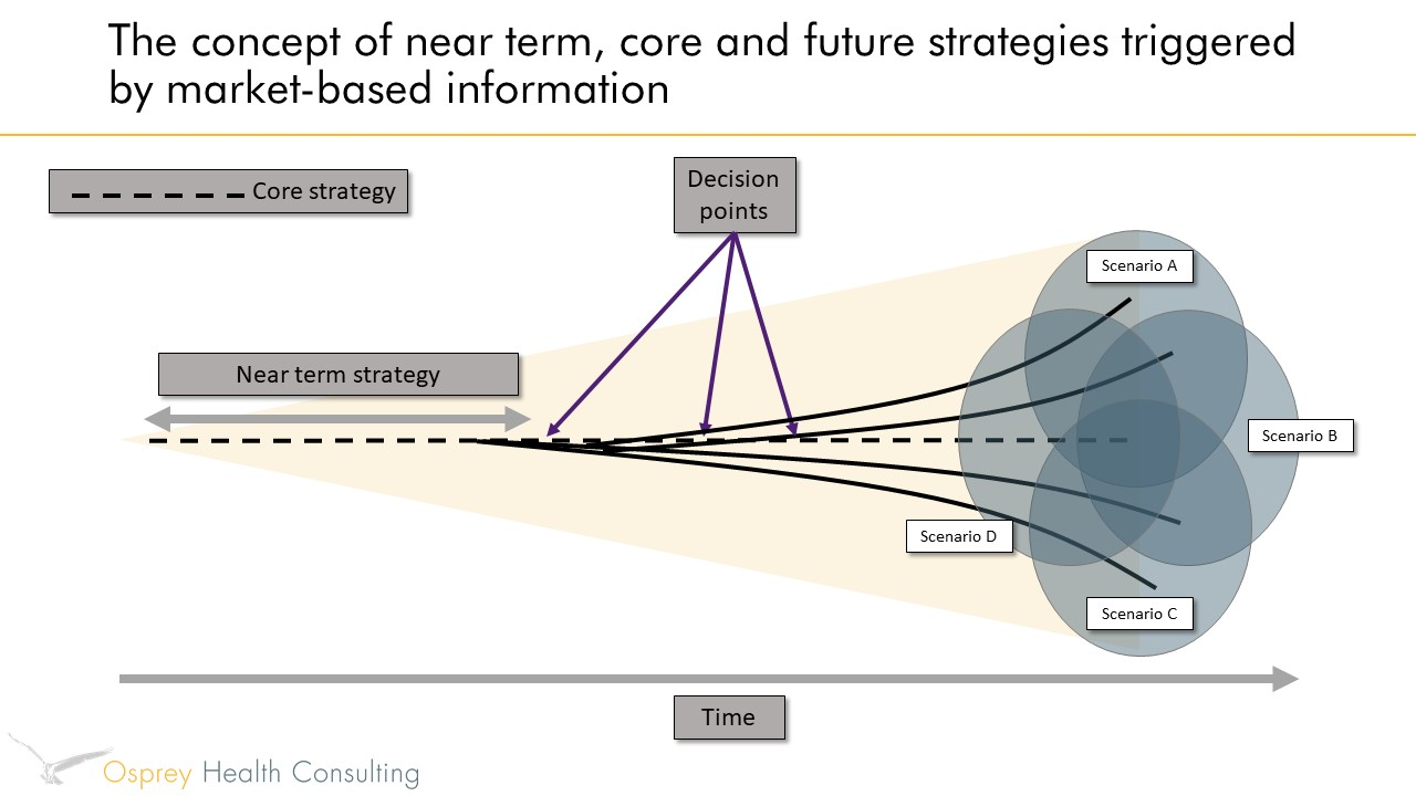 Near term, core and future - strategic planning
