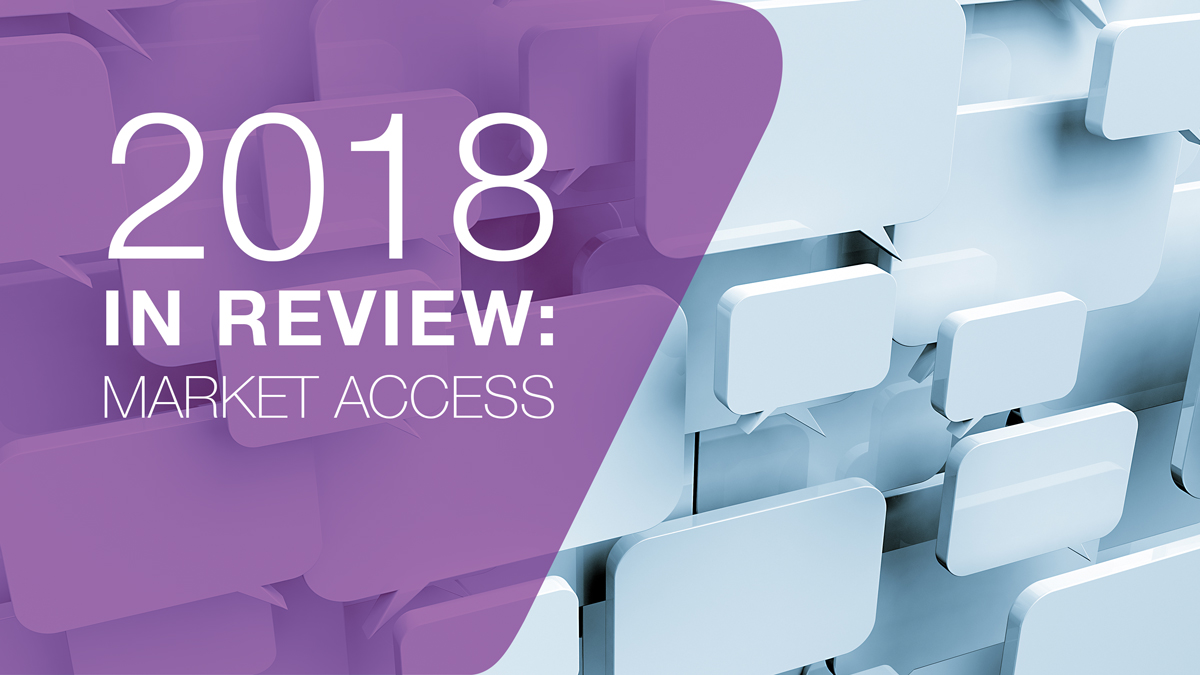 2018 in review: Governments start taking access seriously