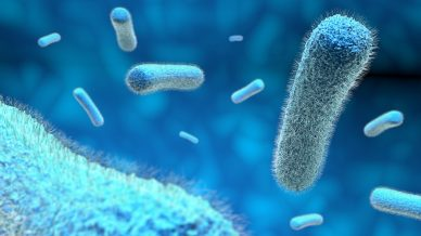 Who will pay the price for inaction on superbugs?