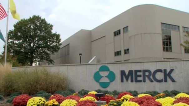 Merck & Co/Eisai eye kidney cancer use for immunotherapy combination