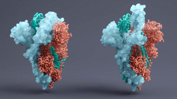 EMA starts review of GSK/Vir COVID-19 antibody
