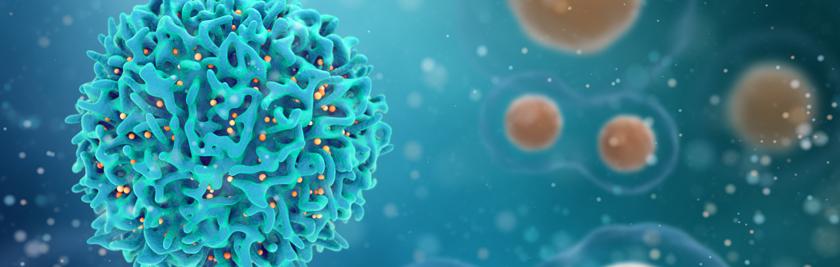3d illustration of T cells or cancer cells