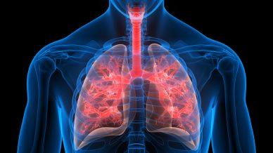 COVID-19: Celltrion's therapeutic option