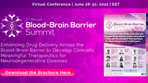 3rd Annual Blood-Brain Barrier Summit