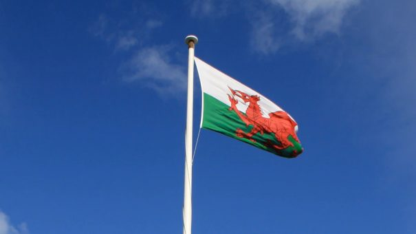 Wales forms authority to drive digital health in NHS