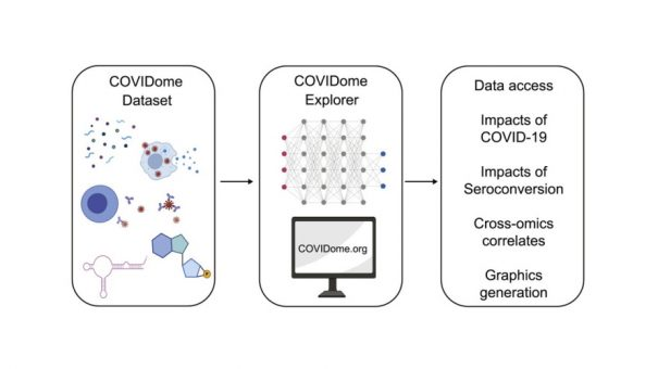 Welcome to the COVIDome, a new tool for COVID-19 R&D